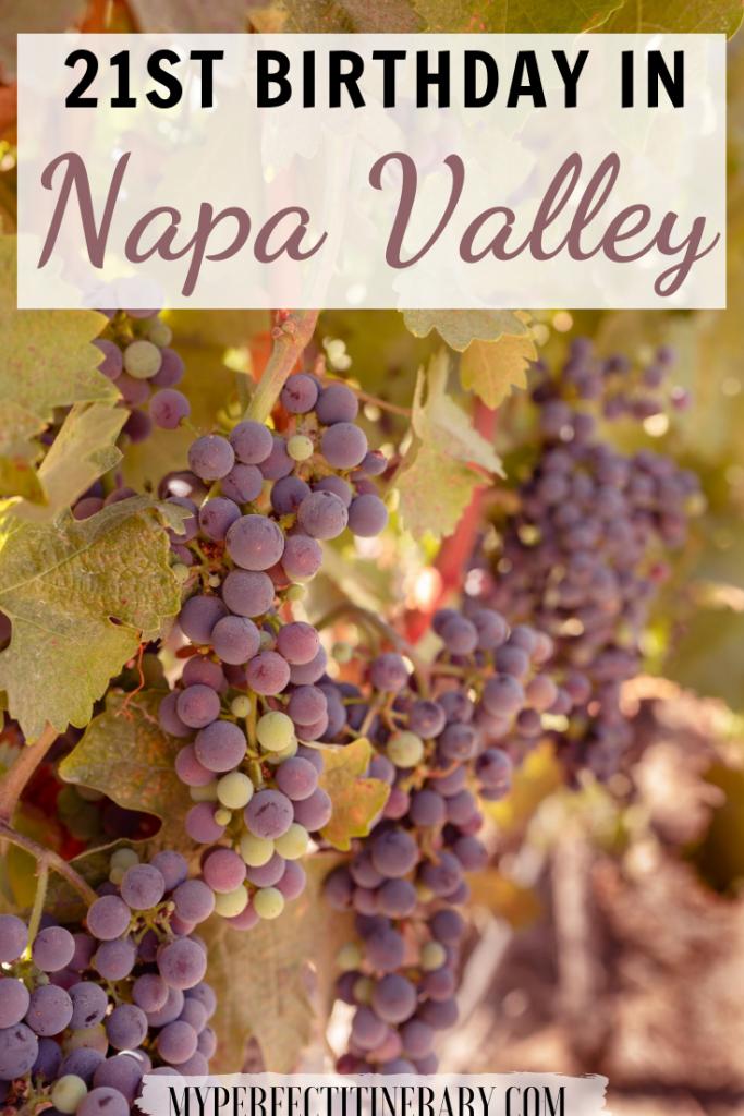 21st Birthday in Napa Valley