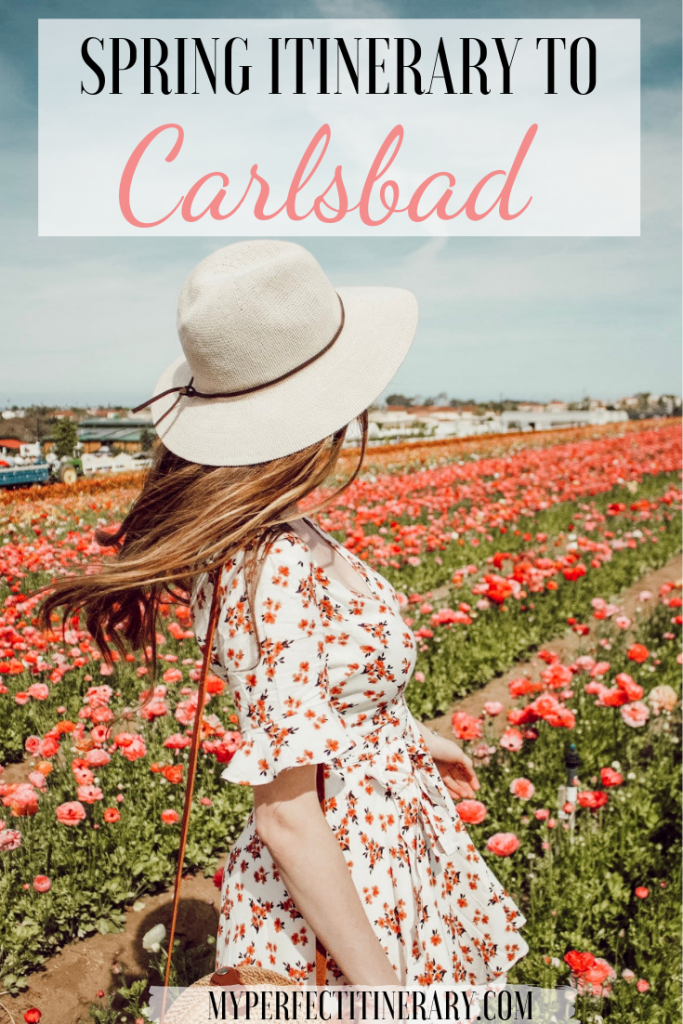 Spring Itinerary to Carlsbad California Pin