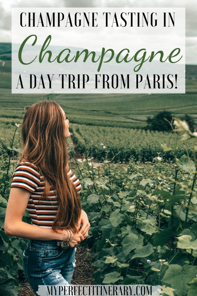 Champagne Tasting in Epernay, Champagne Pin