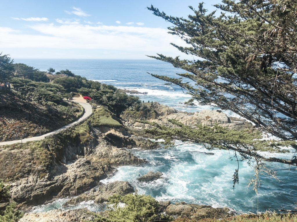 Big Sur Road Trip from Carmel