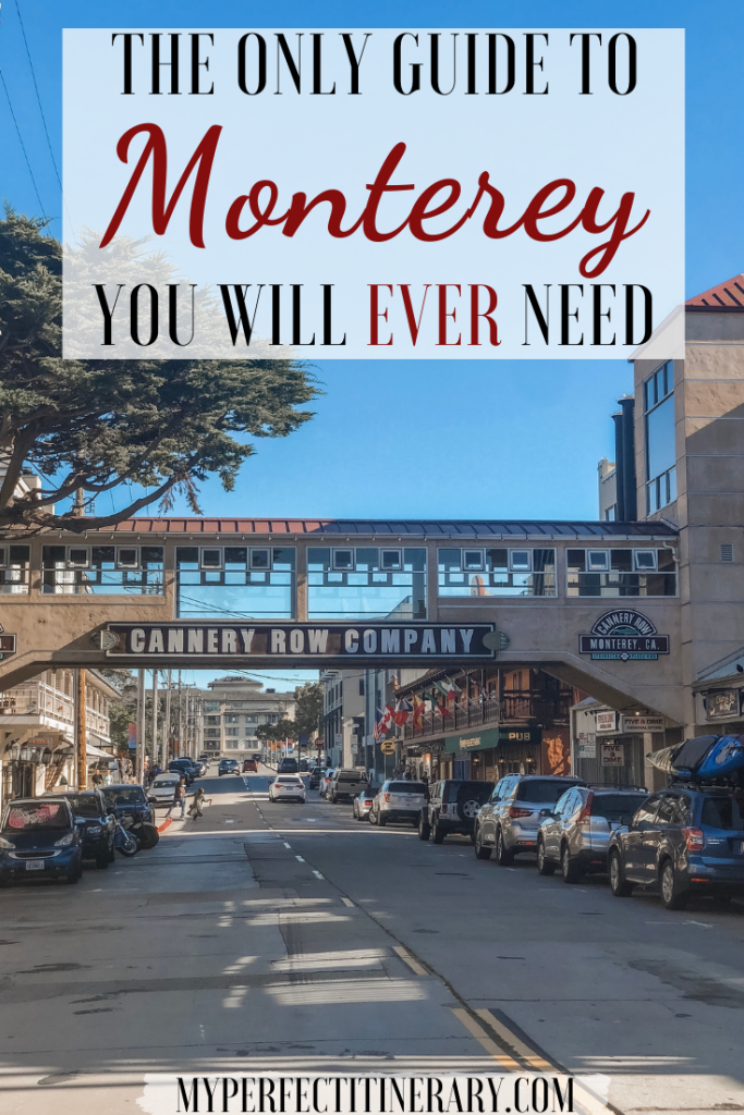 Monterey Travel Guide Pin