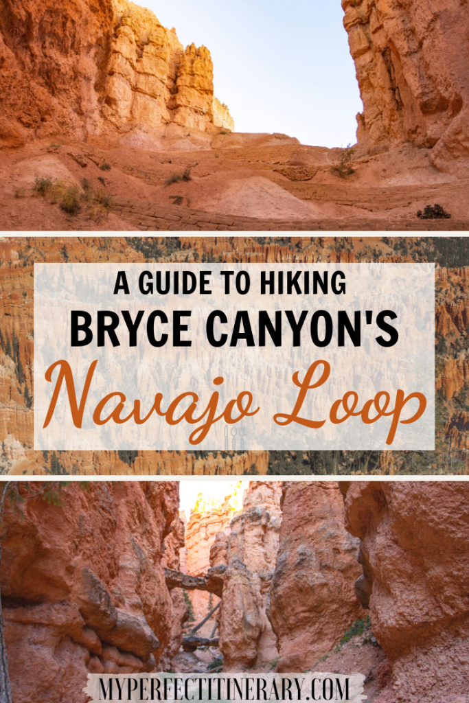 Guide to Hiking the Navajo Loop Trail in Bryce Canyon