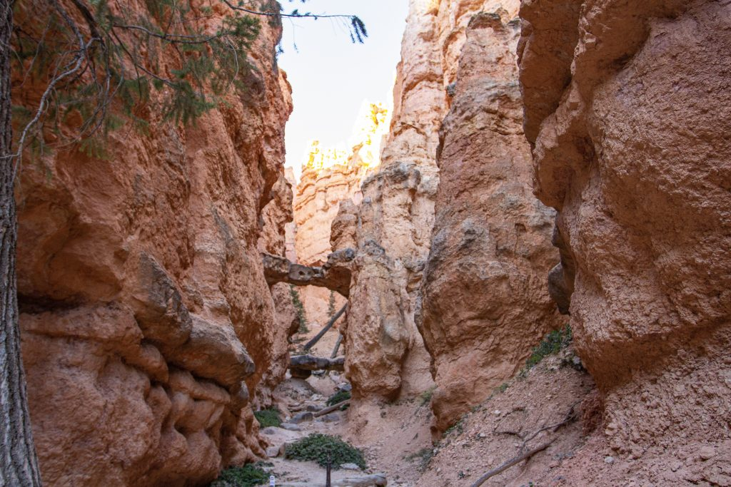 Two Bridges on the Navajo Loop Trail in Bryce Canyon