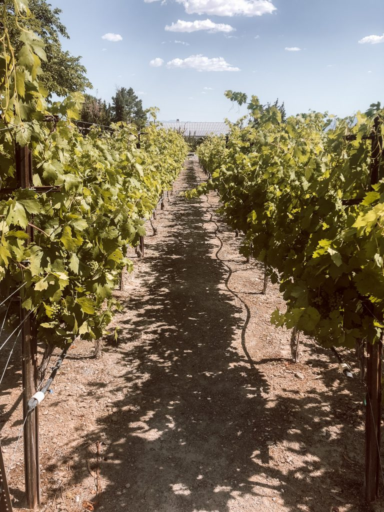 Wine tasting in Pahrump near Las Vegas