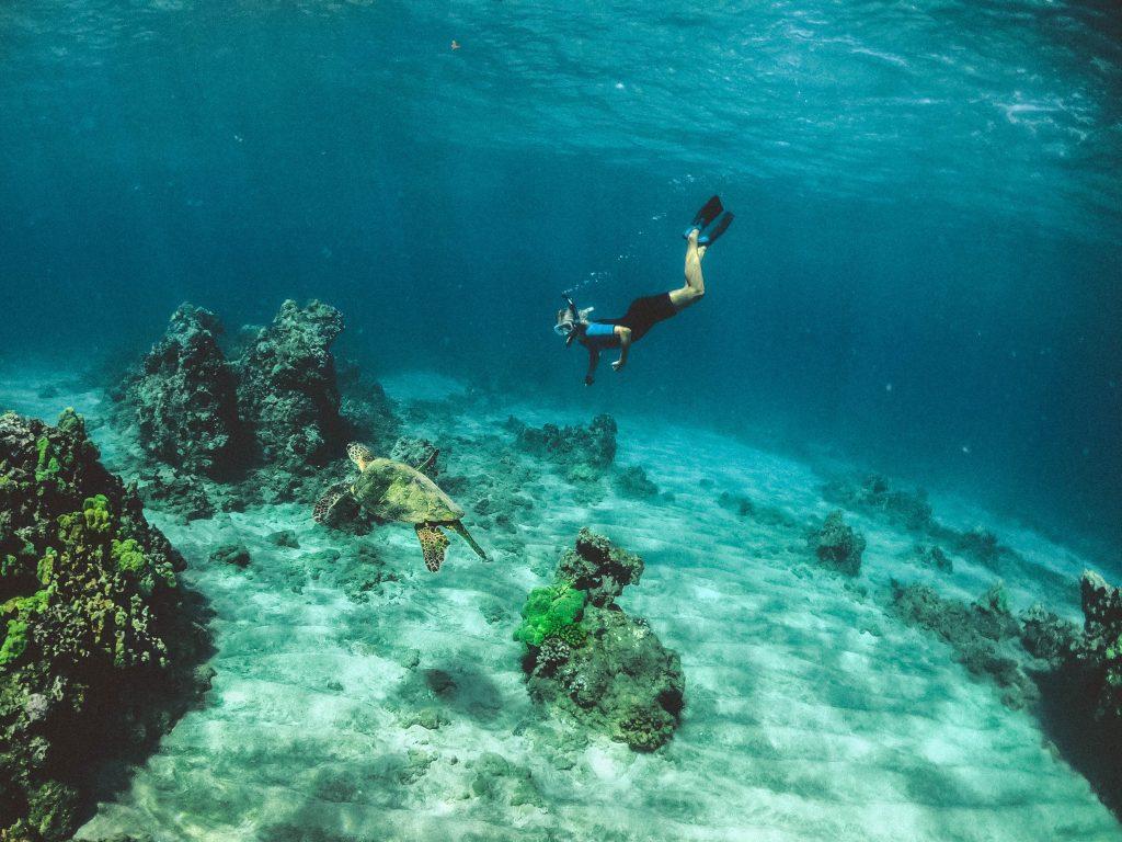 Snorkeling in Maui Hawaii