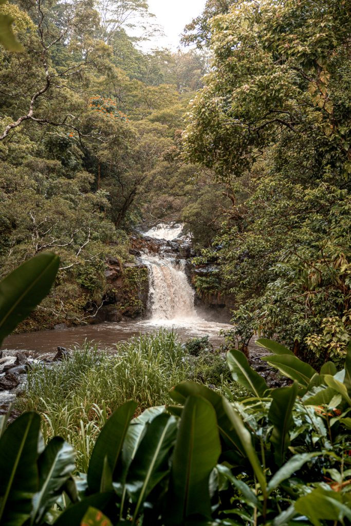 Best Stops on the Road to Hana in Maui