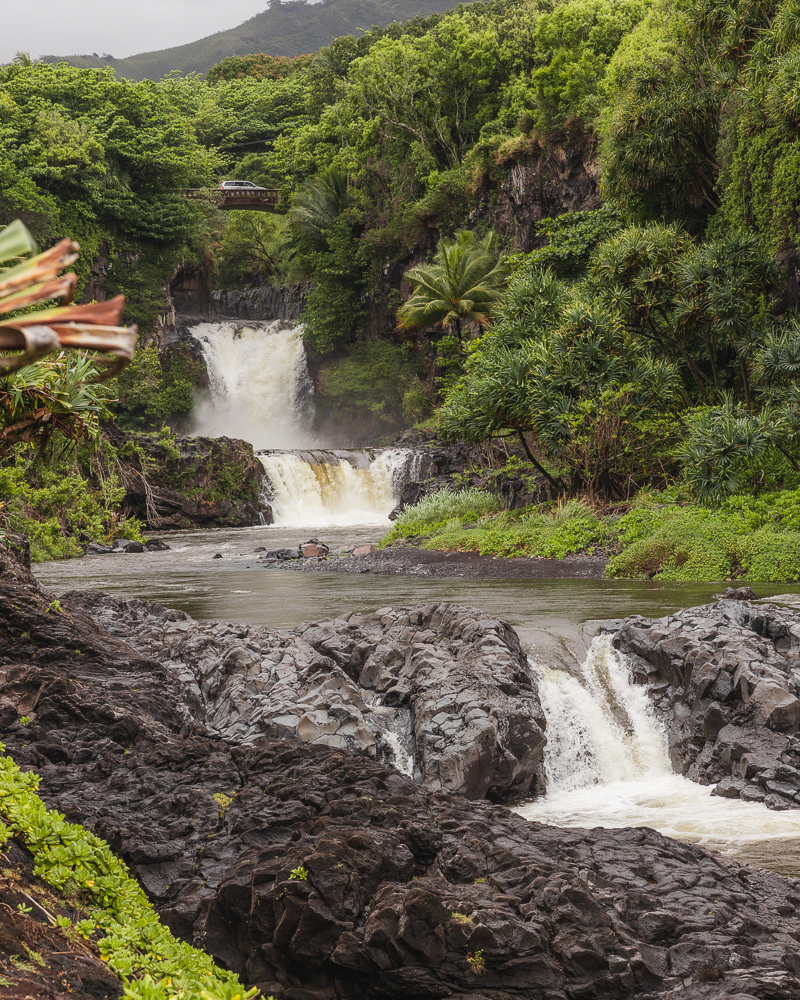 Seven Sacred Pools on the Road to Hana in Maui