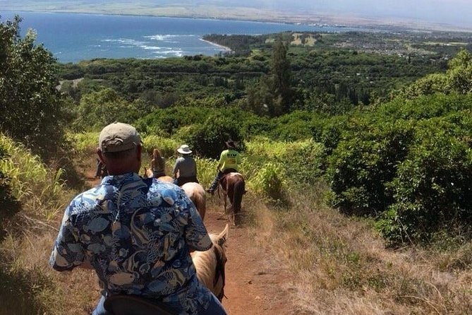 Horseback Riding Maui