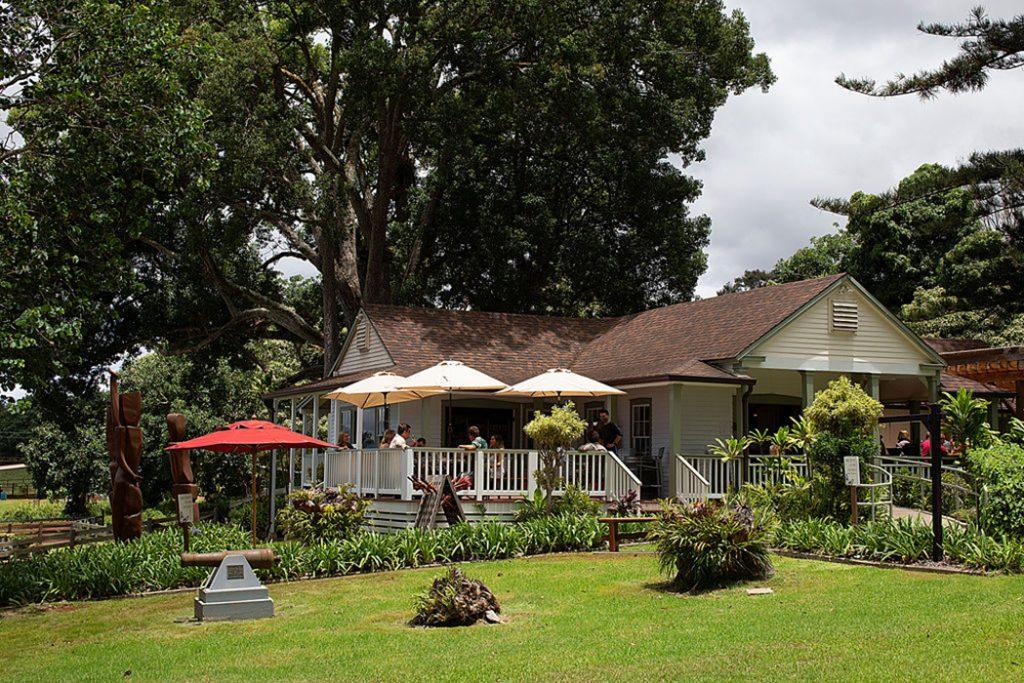 Maui Wine Winery